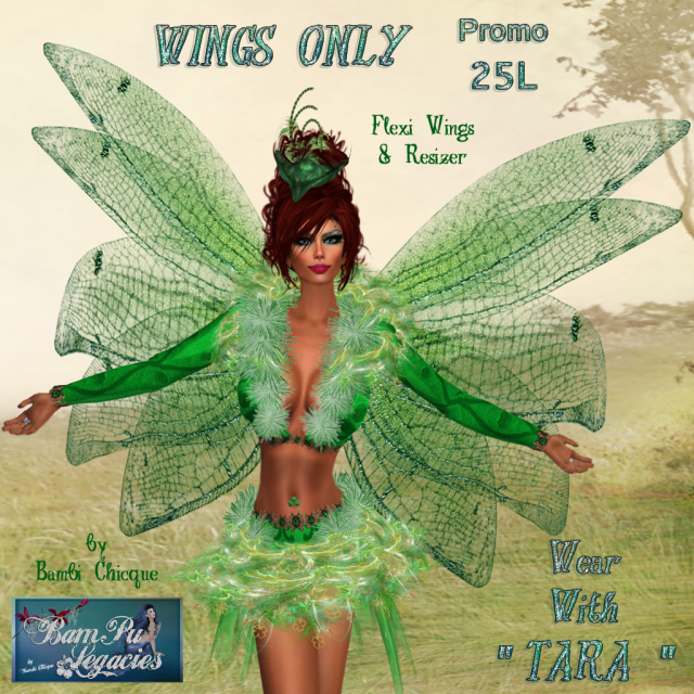 PROMO Tara & Finn Fairy WINGS 25L