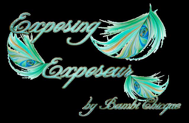Exposing Exposeur Logo