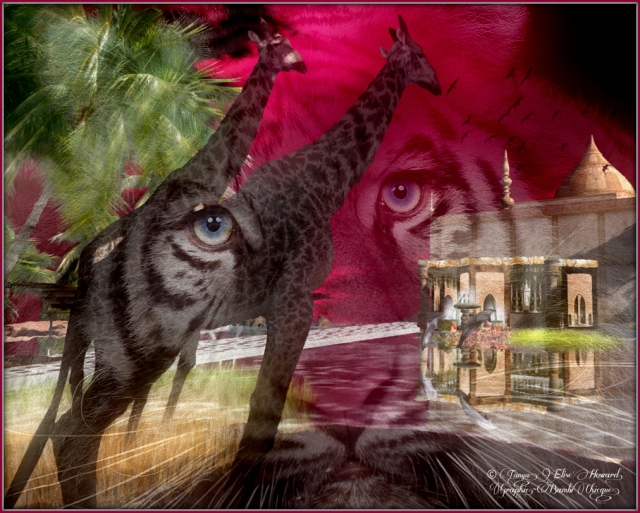 """Eye See Africa"" by Bambi Chicque ~ Sim by ALB ""Lamu Dreams"""