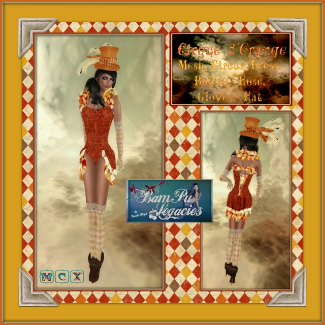 Cirque Panda d'Orange Ladies Mesh Circus Dress & Hat Set