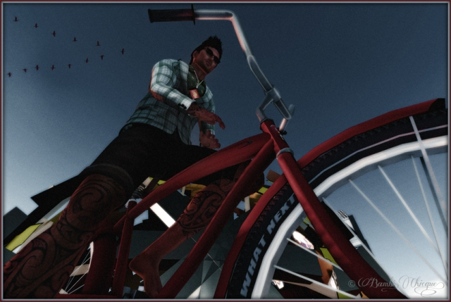 """""""One More Terabyte for Pho"""" by Bambi Chicque for Phobos Jamberoo at SL11B"""